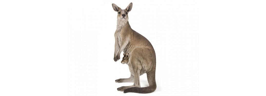 Statue réaliste - Kangourou