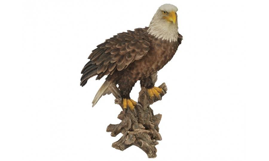 Statue réaliste Aigle