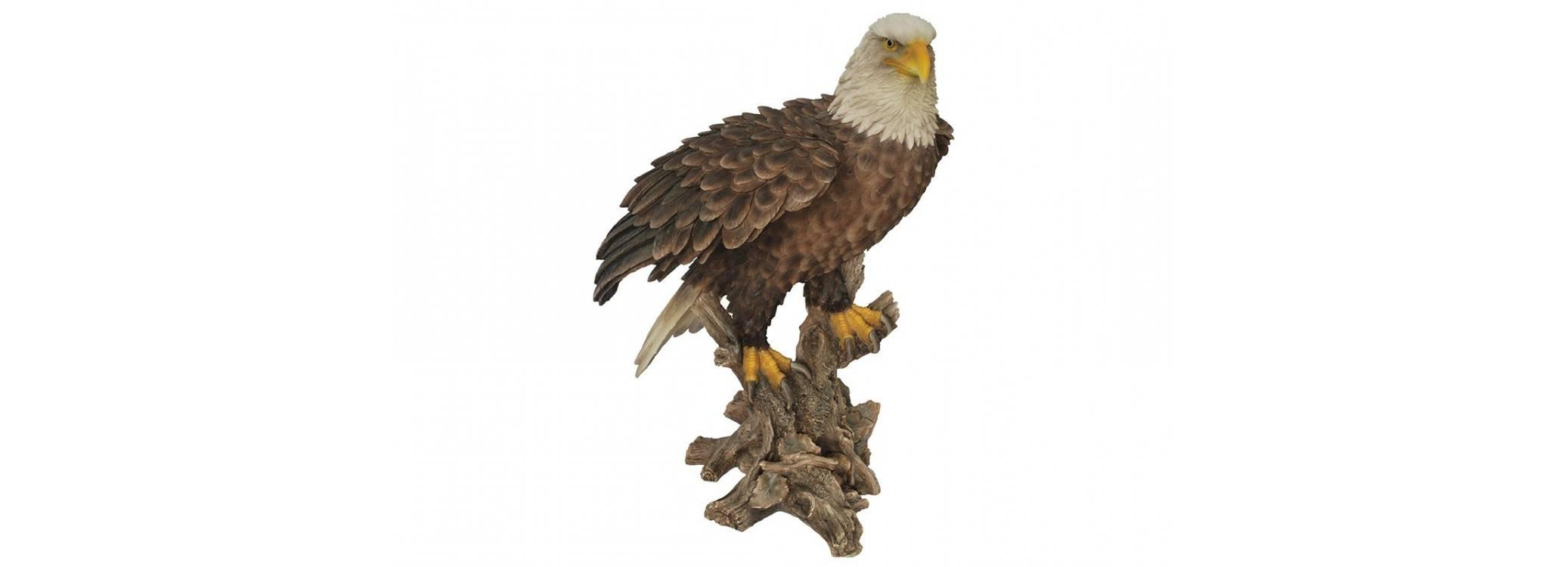 Statue réaliste - Aigle