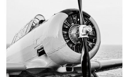 T-6 Texan Airplane picture