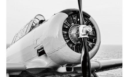 Tableau Avion T-6 Texan