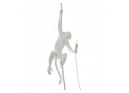 Lampe singe suspendue à une corde